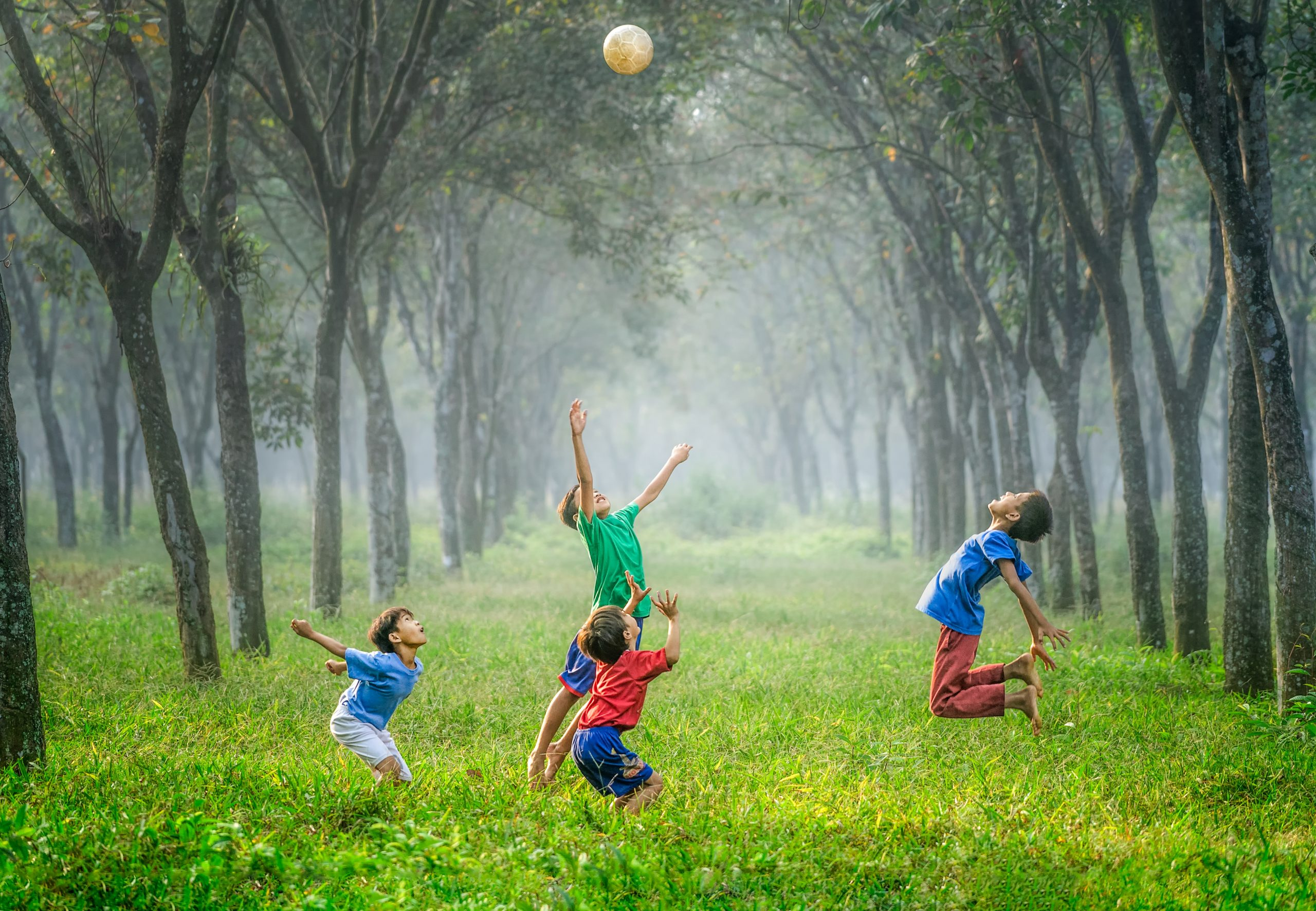 four boy playing ball on green grass